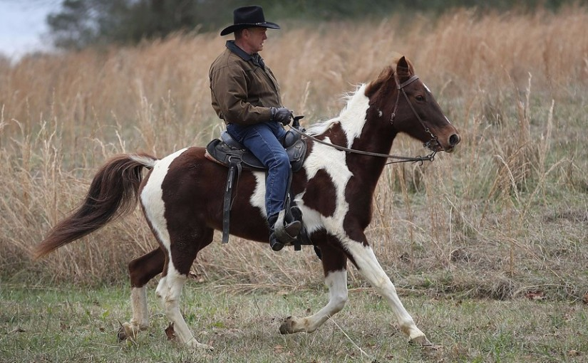 F*CK YOU & THE HORSE YOU RODE IN ON! ALABAMA REPUBLICAN ROY MOORE SUFFERS STUNNING DEFEAT AT THE HANDS OF DEMOCRATIC OPPONENT DOUG JONES
